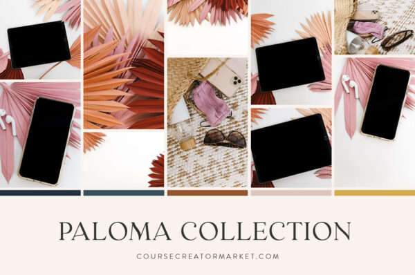 Paloma Collection